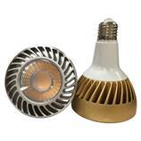 New design 32W PAR30 LED light bulbs