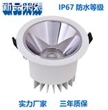 10W waterproof IP65 led downlight