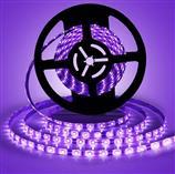 UVC 5050 LED disinfecting strip light